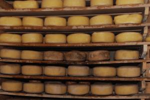 Goot Essa Cheese Cave