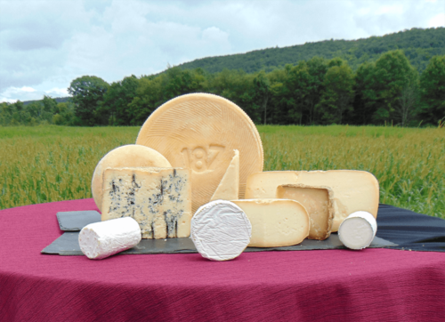 Our best cheeses photographed against the mountain behind the cheese shop