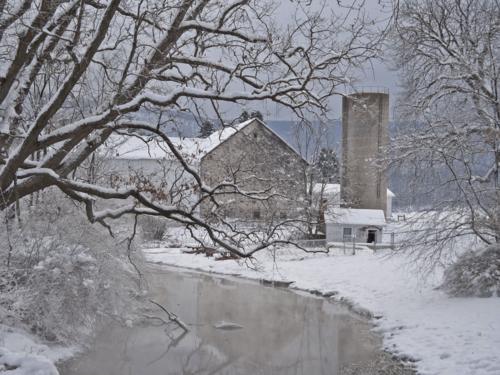 The neighbors farm in winter